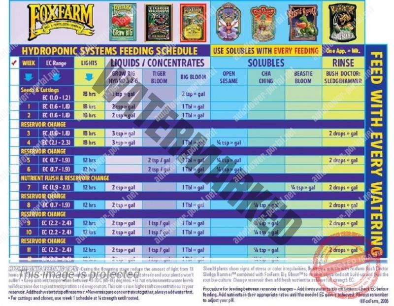 Fox Farm Hydroponic Feed Schedule