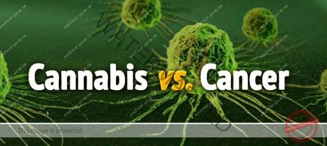 Cannabinoids and cancer treatment
